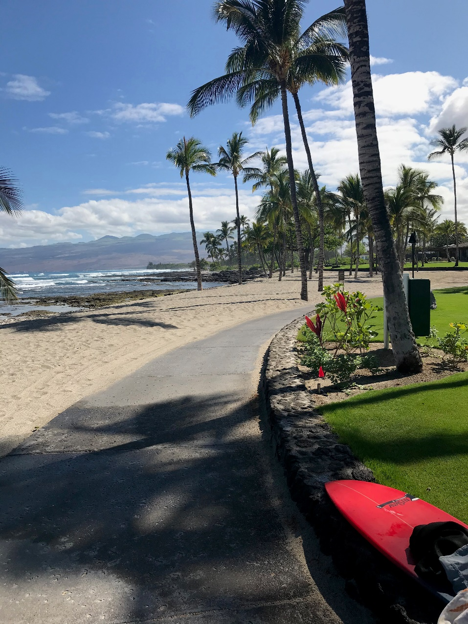 Middle-Land-Hawaii-Hotels
