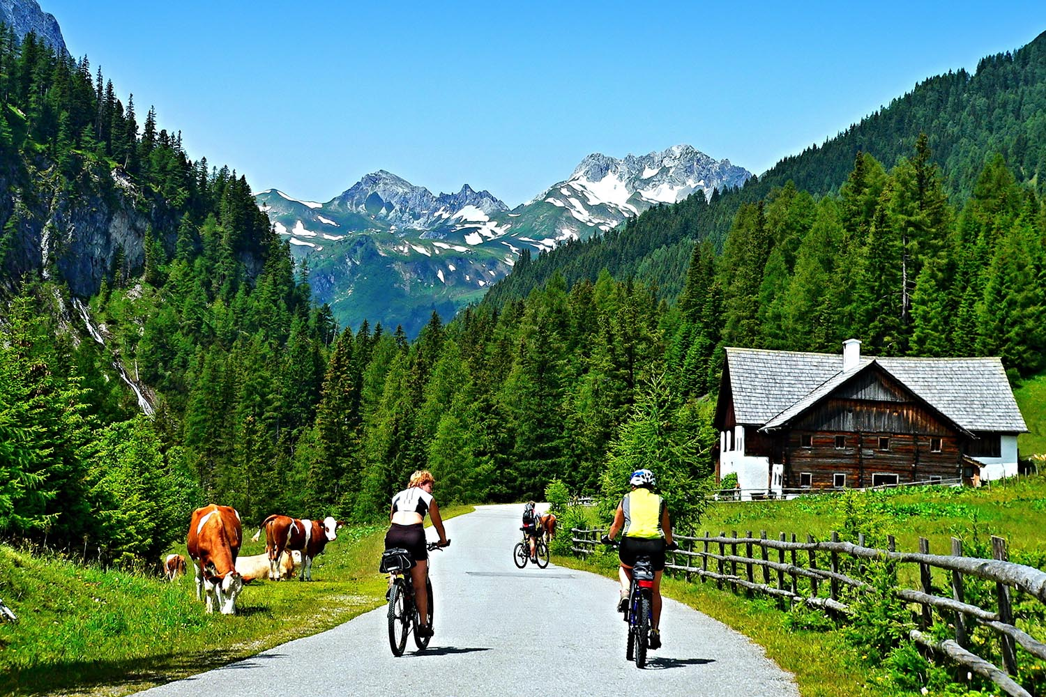 Middle-Land-Austria-Cycling